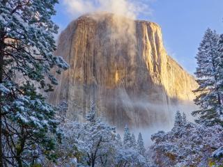обои Гора с плоской вершиной и елки в снегу фото
