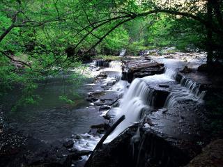 обои Пороги нa реке фото