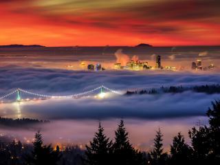 обои Густой туман ночного города фото