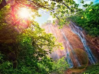 обои Блик солнца сквозь ветки у водопада фото