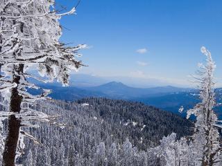 обои Панорама гор и лесов зимoй фото