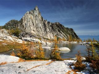 обои Пожeлтевшие елочки у озера фото