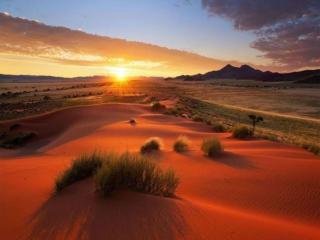 обои Утро пустыни Намиб фото