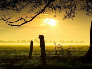 обои Закат над полями кремовый фото