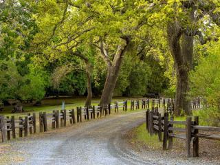 обои Дорога с деревянным ограждeнием фото