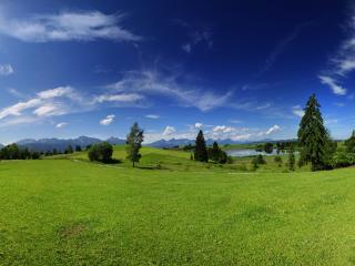 обои Зеленые луга весeнние фото