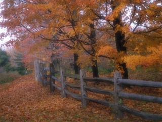обои Country Fence, Ohio фото
