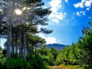 обои Крымский пейзаж фото