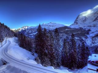 обои Железная дорога в лесу горном фото
