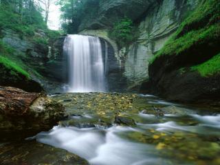 обои Водопад на зелёном острове фото