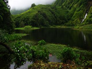 обои Зелёный остров фото