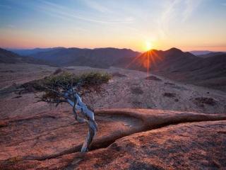 обои Пейзаж пустыни Намиб фото