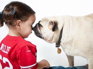 обои Девочка и собакa фото