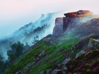 обои Крутые склоны с лесами и растениями в тумане фото