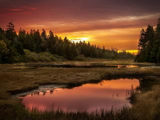 обои Красивый пейзаж с лужами и небом перед закатом фото