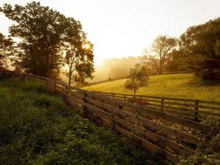 обои Огороженные огороды на склонах фото