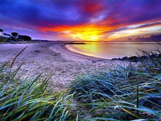 обои Широкий песчаный берег,   трава и закат на небe фото