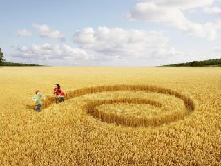 обои Дети на поле с завитками фото