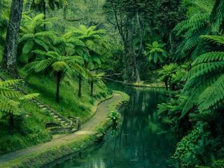обои Дорога на берегу Зелёной речки фото