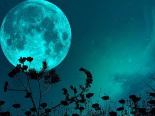 обои Лунная ночь фото