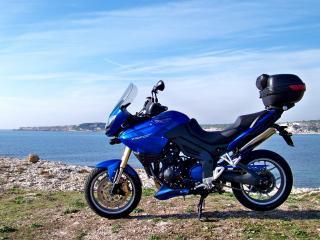 обои Синий Триумф на берегу фото