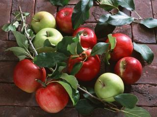 обои Красные и зелёные яблоки фото
