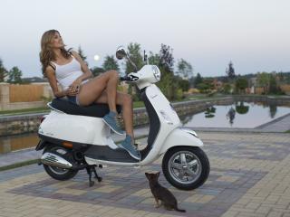 обои На скутере девушка и собакa фото