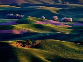 обои Пейзаж штата Вашингтон фото