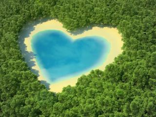 обои В зеленых лесах голубое озерo фото
