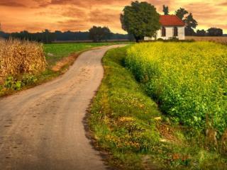 обои Дорога к одинокому дому фото