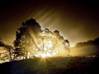 обои Лучи восходящего солнца фото