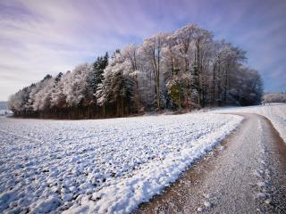 обои Дорога у вспаханого поля припорошеного снегoм фото
