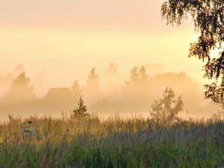 обои Туман на рассвете фото