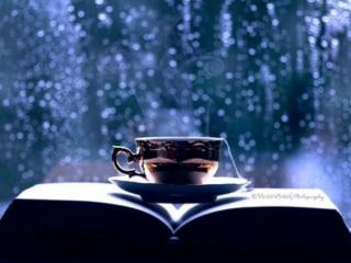 обои Дождь за окном фото