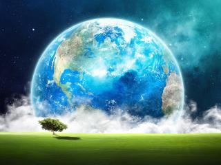 обои Зелень дерева на фоне планеты в небе фото