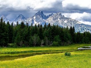 обои Речка между трав и лес под горами на берегу фото
