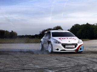 обои Белые Peugeot на зансе фото