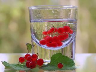 обои Красная смородина в стакане фото