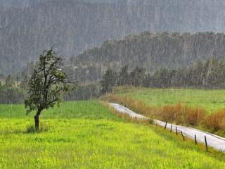 обои Пейзаж под дождем фото