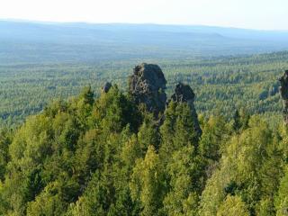 обои Уральские леса фото