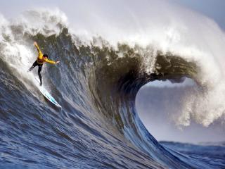 обои Крутой серфинг фото