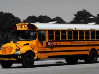 обои Оранжевый школьный автобус фото
