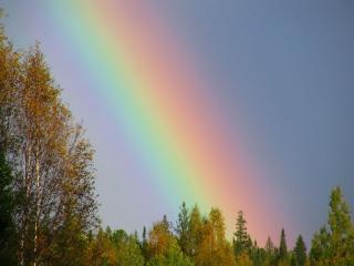 обои Где начинается радуга фото