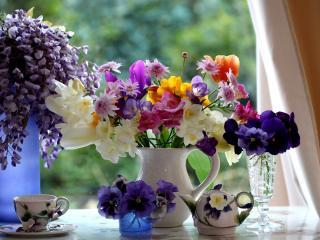 обои Натюрморт - Разные вазы и цветы фото