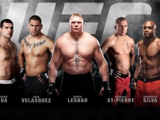 обои Бойцы смешанных боевых искусств UFC фото