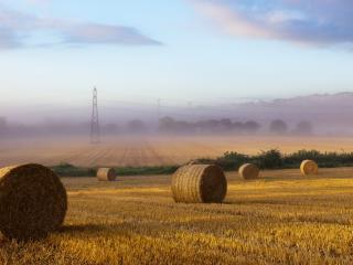 обои Легкий туман над скошеным полем с тюками фото