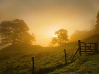 обои Туманное утро в деревне фото