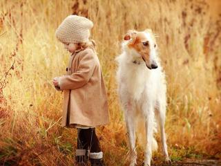 обои Девочка с собакой фото
