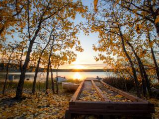 обои для рабочего стола: Опадающая листва с деревьев на берегу у железной кладки