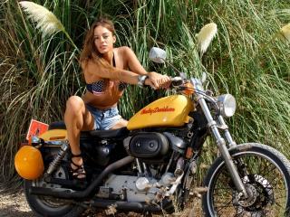 обои На мотоцикле у зеленых зарослей фото